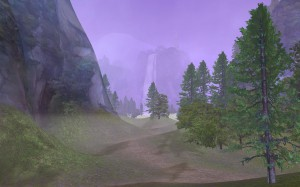 Ein Wald im Tal